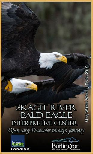 Skagit River Bald Eagle Interpretive Center 2019