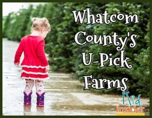 U Pick Farms Sticky